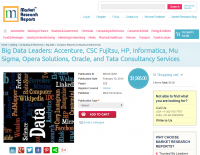 Big Data Leaders: Accenture, CSC Fujitsu, HP, Informatica