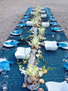 Temptations Catering and Event Planning Table Layout Blue1'