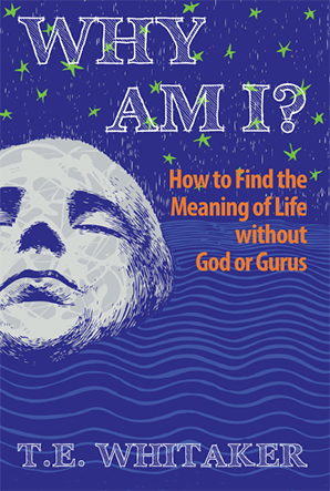 "Cover of ""Why Am I?"""
