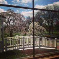 Northampton Valley Country Club Window View!