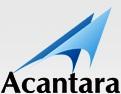 Search Engine Optimization - Acantara'
