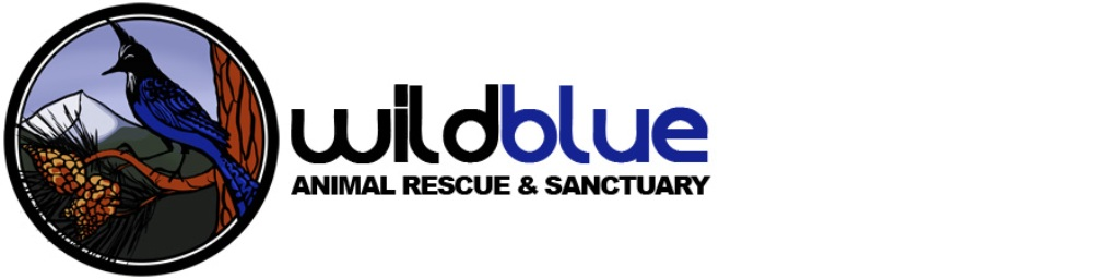 Company Logo For Wild Blue Animal Rescue & Sanctuary