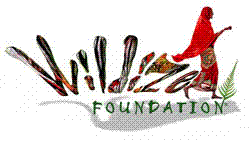 Wildize Foundation'