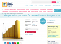 Challenges and Opportunities for the Wealth Sector in Nigeri