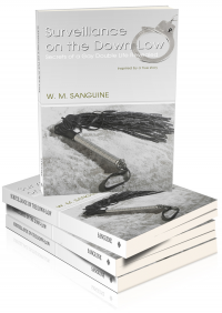 Surveillance on The Down-Low, by W. M. Sanguine