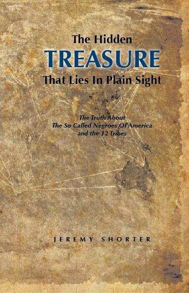 The Hidden Treasure'