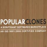 The Best Website Builder Software Provider India'