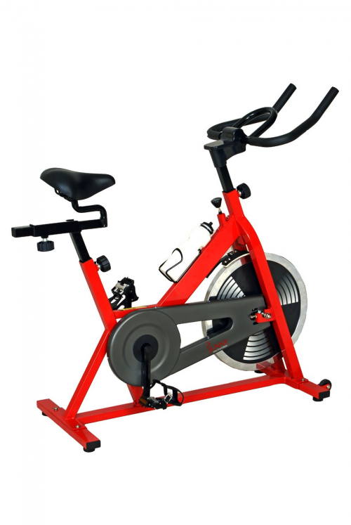 Sunny SF-B1001 Indoor Cycling Bike'
