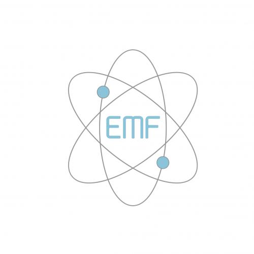 Company Logo For EMF Power'