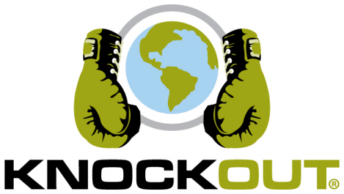 Knockout Carpet Cleaning'