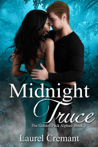 Midnight Truce - erotic romance