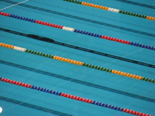 Swim Instruction DVD By Scott Tucker on Fitness Life Stories'