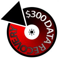 $300 Data Recovery Logo