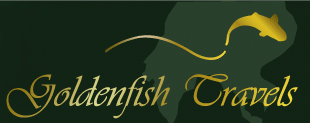 Company Logo For Golden Fish Travels'