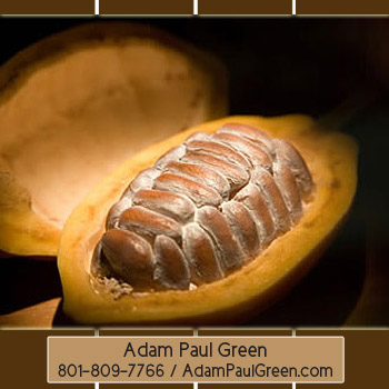 Adam Paul Green'