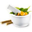 Ayush Remedies Logo'