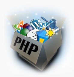 Hire PHP Programmer'