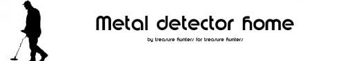 metal detector home'
