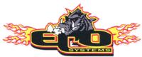 Cindy Trueson Logo
