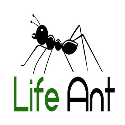 Life Ant'