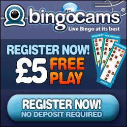 Bingo Cams'