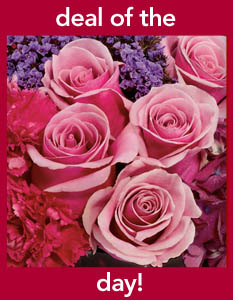Pittsford Florist Deal of the Day'