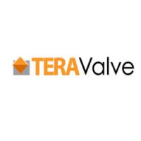 TeraValve Logo