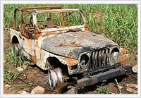 Cash For Junk Autos'