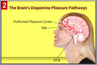 Peak BrainHappiness Trainer 2