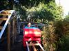 Lyle Pemble (11) Rides His Roller Coaster'