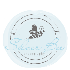 Company Logo For Silver Bee Photography'