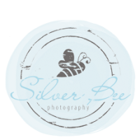Silver Bee Photography Logo