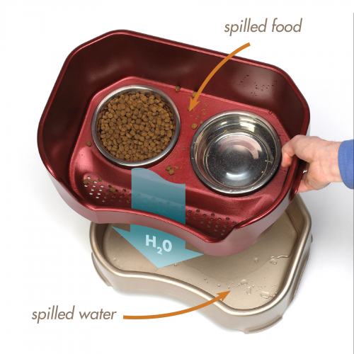 Neater Feeder Review'