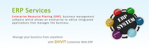 ERP Software Development company'