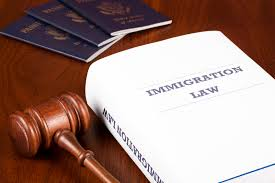 immigration law'