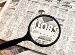 job hunting'