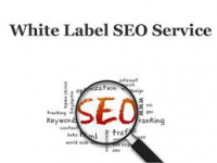 white label SEO service