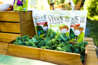 Veggie Evolution to Eat More Veggies This Summer