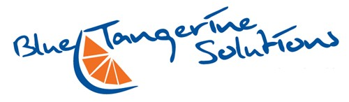 Logo for Blue Tangerine Solutions'