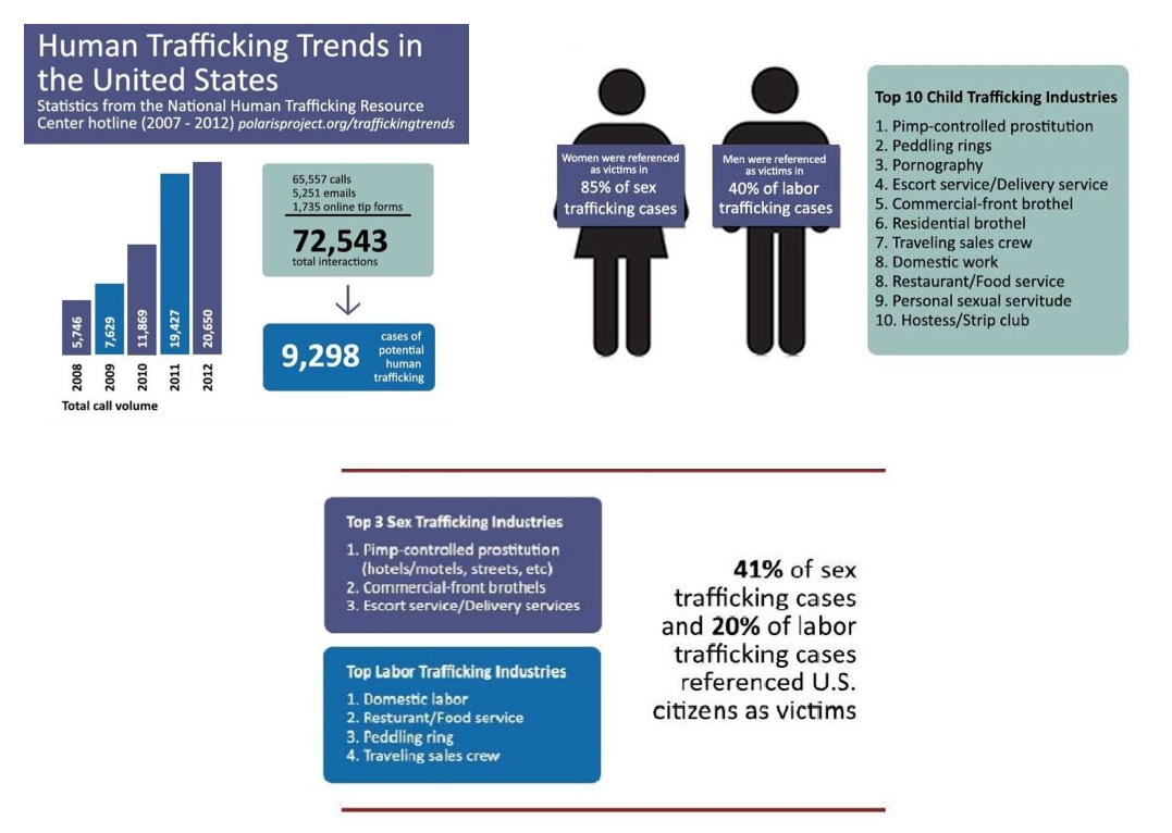 Human Trafficking Trends Chart