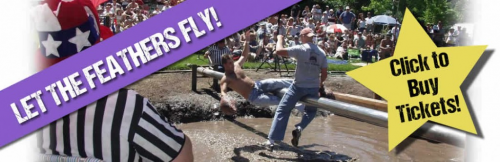 The World Pillow Fighting Championships'
