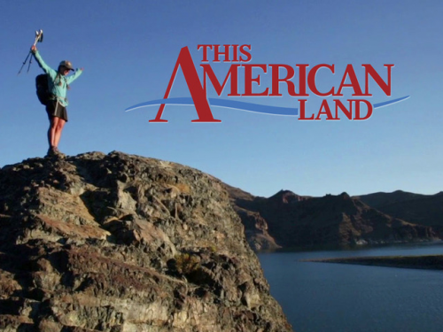 This American Land'