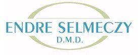 Company Logo For Endre Selmeczy D.M.D.'