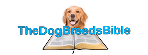 Company Logo For The Dog Breeds Bible'