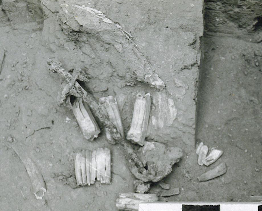 Ancient Equestrian Bit