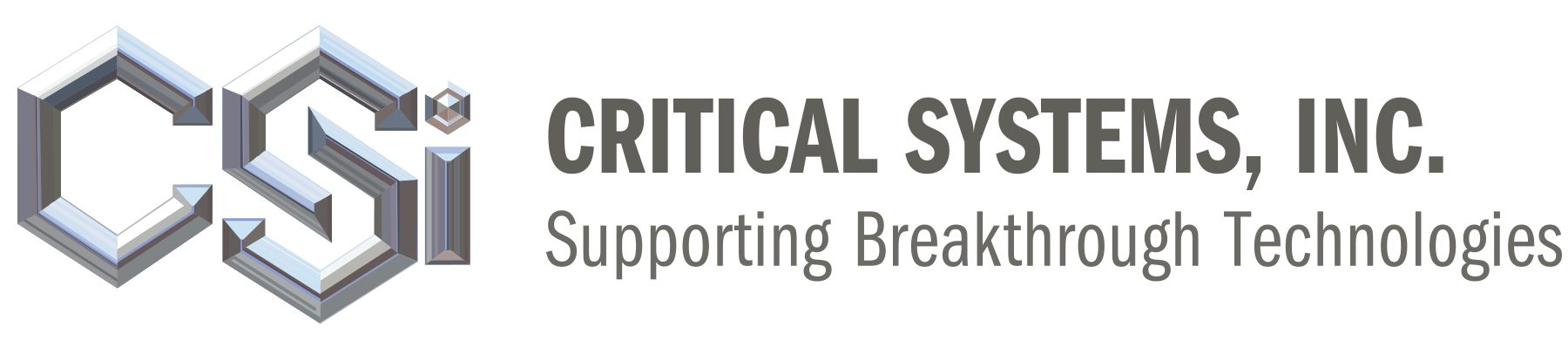 Critical Systems, Inc. Logo