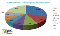 Global Biopower Generation Capacity at a Glance in 2013