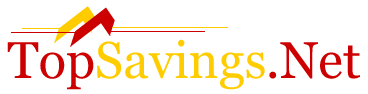 Logo for TopSavings.Net Telecommunications'