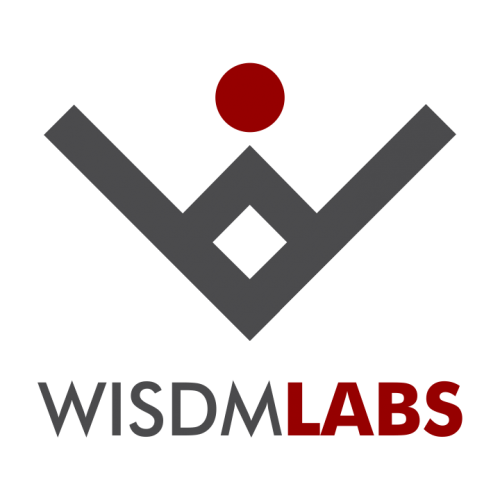 Company Logo For WisdmLabs'