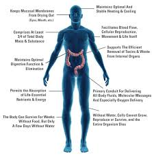 effects of toxins in water'